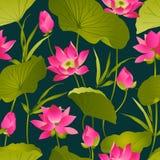 Lotus blommor och sidor vattenfärg seamless vektor för modell Royaltyfria Bilder