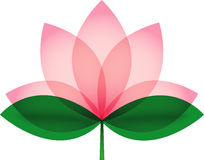 Lotus blossom for icon or logo Stock Image