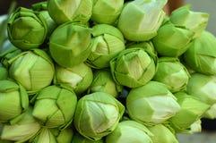 Lotus-Blume Lizenzfreies Stockfoto