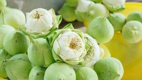 Lotus-Blume in einem Tempel Lizenzfreie Stockfotografie