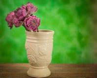 Lotus-Blume in einem Vase Stahl-Leben Lizenzfreie Stockfotos