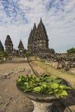 Lotus-Blume und hindischer Tempel Stockfoto