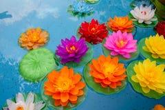 Lotus-Blumen, die in den Teich schwimmen stockfotos