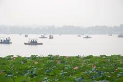 Lotus-Blumen und dunstiger See mit Booten stockfotografie