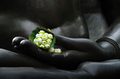 Lotus in the buddha hand. Stock Photo