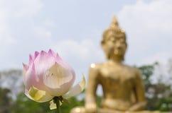 Lotus Buddha-Hintergründe Lizenzfreie Stockfotografie