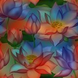 Lotus buds and flowers seamless wallpaper., Water lilly nelumbo aquatic plant floral graphic design. royalty free stock image