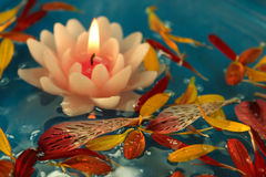 Floating lotus candle. A pretty candle shaped like a lotus flower floating on water with some real flower petals in it stock photos
