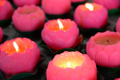 Lotus Candle Stock Photo