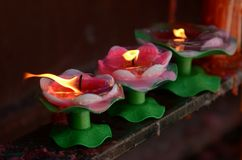 Lotus Candle Stock Photos