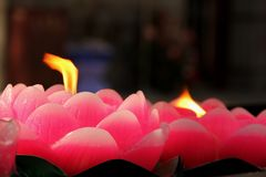 Lotus Candle Stock Image