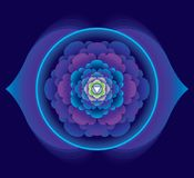 Lotus com duas pétalas - o terceiro olho Fotos de Stock