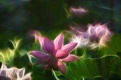 Lotus Creative Figure Fotografering för Bildbyråer