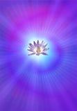 Lotus d'éclaircissement illustration de vecteur
