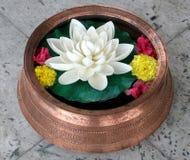 Lotus dans le vase de cuivre Photo stock