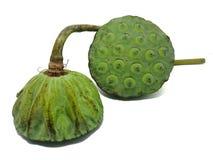 Lotus-de zaden zijn gerangschikt als gehele die korrels van China, als zeer hoog worden bekend - proteïne stock foto