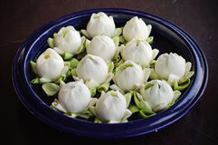 Lotus decorate in vase. White lotus in vase, Preparing for spa.Thailand style Stock Photography