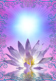 Lotus with decorative edging. Lotus flower with decorative edging Stock Photo