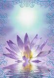 Lotus with decorative edging. Lotus flowwer with decorative edging Royalty Free Stock Images