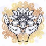 Lotus in den H?nden stockbild