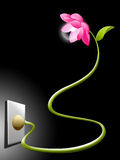 Lotus electric flower. Plugged in the wall on a dark ambient