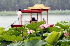 Lotus en boot. stock afbeeldingen