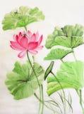Lotus en libel Stock Afbeelding
