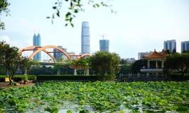 Lotus et bâtiments modernes Photographie stock