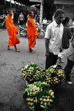 Lotus de moine Photos libres de droits