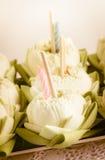 Lotus floating basket Royalty Free Stock Images