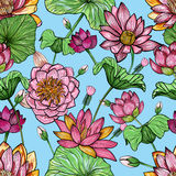 Lotus floral seamless pattern. Hand drawn colorful background. Stock Image