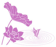 Lotus flower. And butterfly. Vector illustration Royalty Free Stock Images