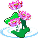 Lotus flower. Vector illustration for a artistic lotus flower, for chinese new year Stock Photo