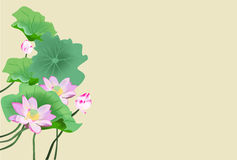 Lotus flower royalty free illustration