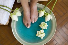 Lotus flower aromatherapy spa for feet 2 Royalty Free Stock Photo