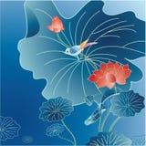 Lotus flower background Royalty Free Stock Photos