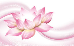 Half Lotus Flower