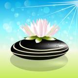Lotus flower on black spa stone logo. Lotus flower on black spa stone bubbles and sun logo on water lake background vector template image Royalty Free Stock Image
