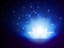 Lotus Flower Blue Imagenes de archivo