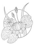 Lotus flower coloring book vector illustration. Tattoo stencil. Black and white lines. Lace pattern Stock Photo