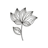 Lotus flower decoration sketch Royalty Free Stock Images