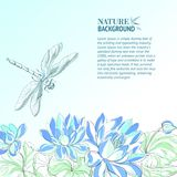 Lotus flower and dragonfly. Royalty Free Stock Photo