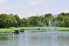Lotus Flower Festival in Yuanmingyuan Park Stock Photography
