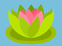 Lotus flower floating Royalty Free Stock Photography