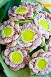 Lotus Flower Group rosada Imagen de archivo libre de regalías