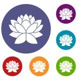 Lotus flower icons set Stock Image