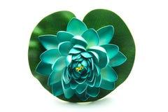 Lotus flower model Royalty Free Stock Photos