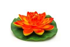 Lotus flower model Royalty Free Stock Images