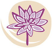 Lotus Flower in Pink on Yellow Background. Symbol of Purity and Meditation Royalty Free Stock Image