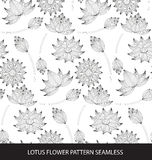 Lotus flower seamless pattern Royalty Free Stock Photography